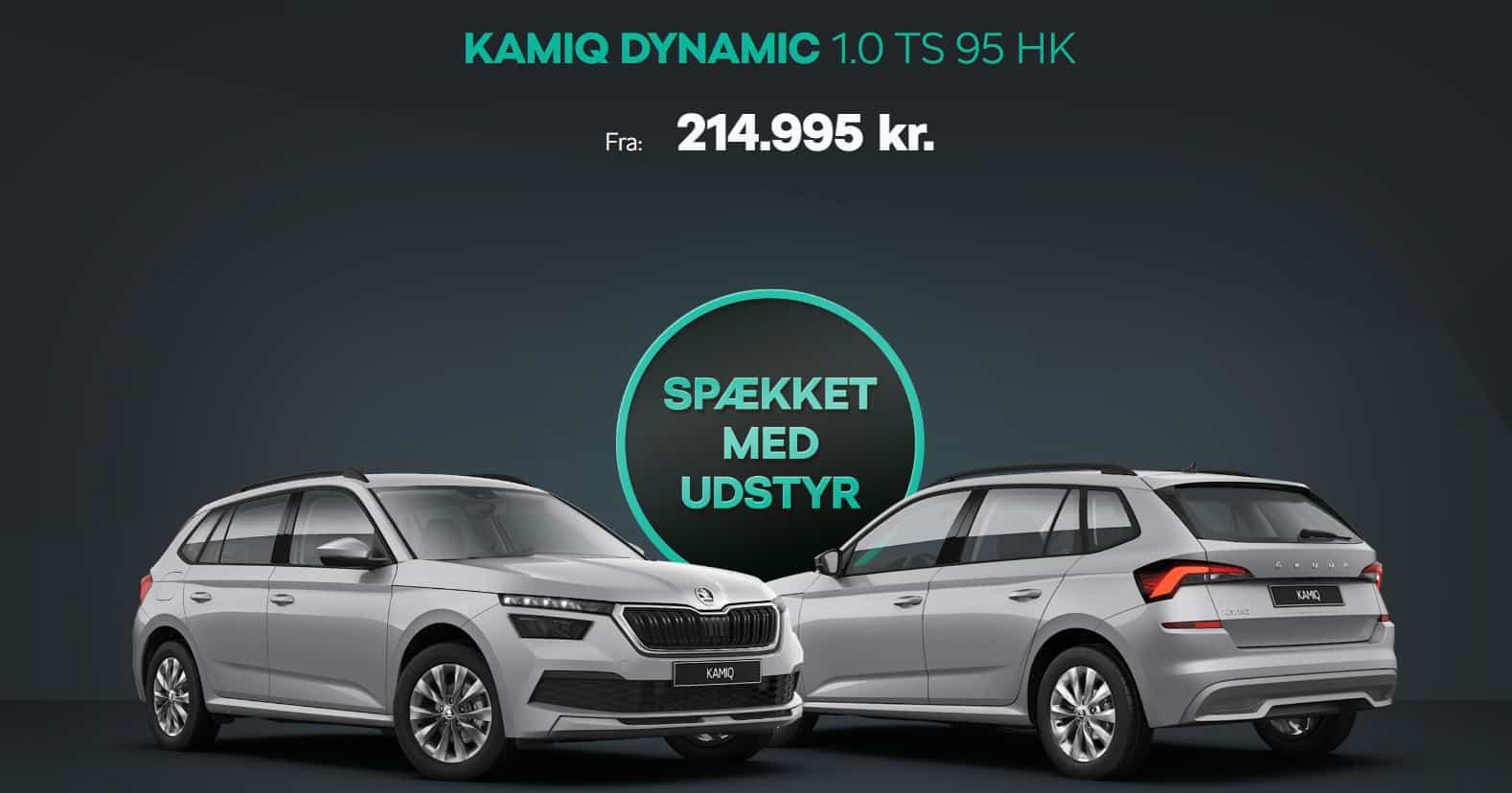 Kamiq dynamic