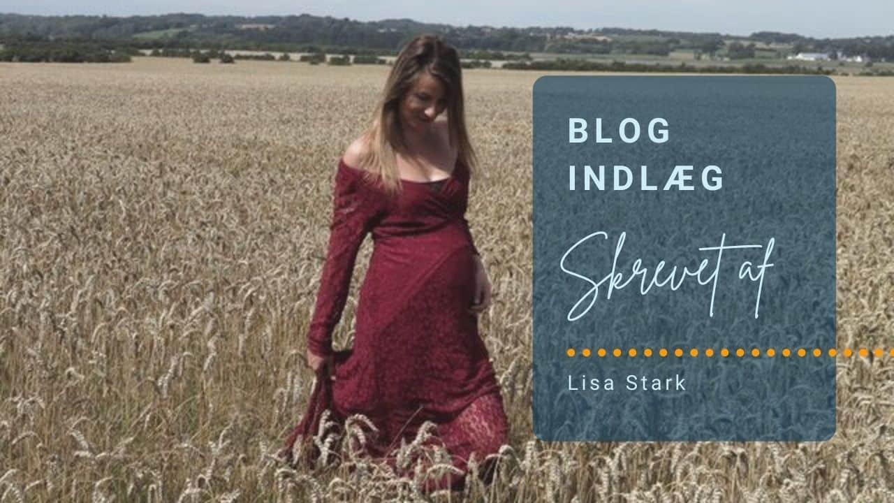 Blogindlæg af Lisa Stark