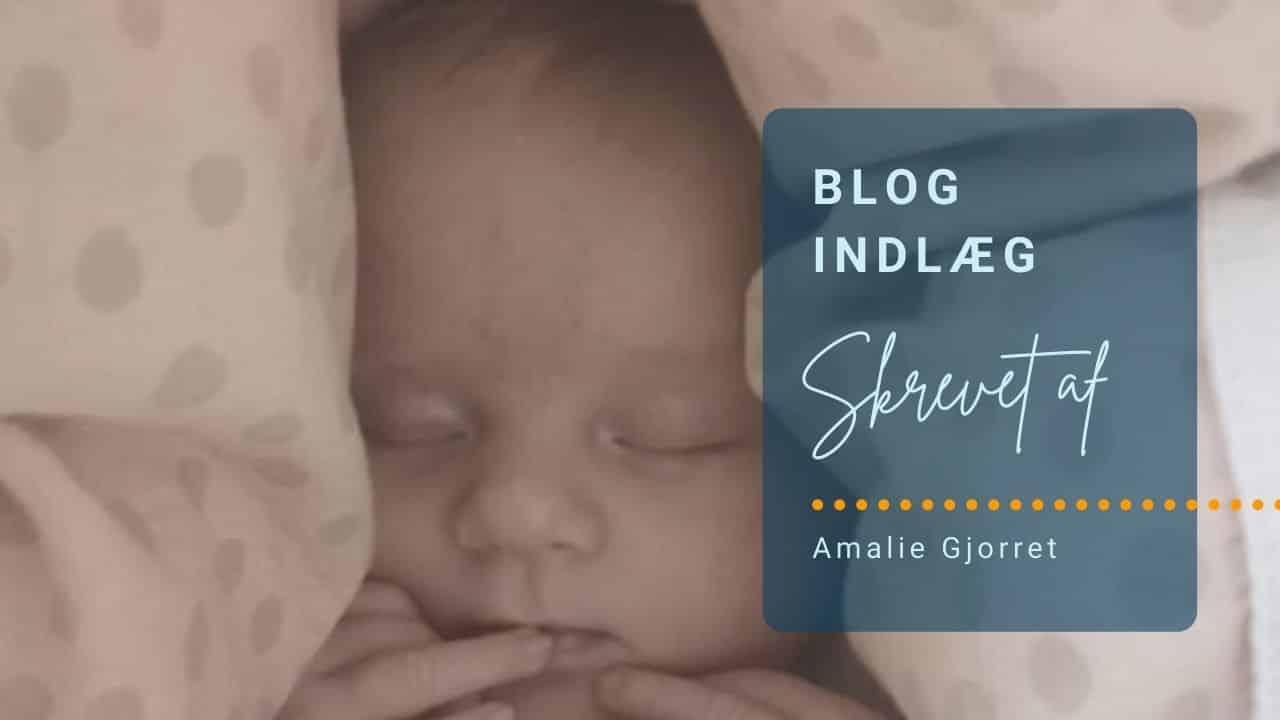 Blogindlæg af Amalie Gjorret